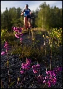 Dressincyklare utanför Virserum, Småland