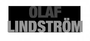 Olaf Lindström - WordPresskonsult